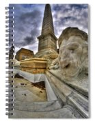 0016 Lions At The Square Spiral Notebook