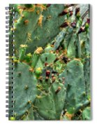 002 For The Cactus Lover In You Buffalo Botanical Gardens Series Spiral Notebook
