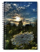 003 Life Is Beautiful Spiral Notebook