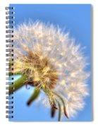 003 Make A Wish Spiral Notebook