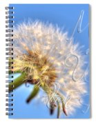 003 Make A Wish With Text Spiral Notebook