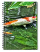 003 Within The Rain Forest Buffalo Botanical Gardens Series Spiral Notebook