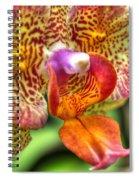 004 Orchid Summer Show Buffalo Botanical Gardens Series Spiral Notebook