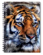 004 Siberian Tiger Spiral Notebook