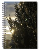 005 Peaking Winter Sunrise Spiral Notebook