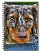 0054 Puppy Dog Eyes Spiral Notebook