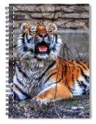 007 Siberian Tiger Spiral Notebook