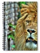008 Lazy Boy At The Buffalo Zoo Spiral Notebook