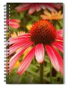 0086 Spiral Notebook