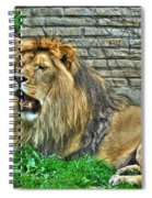 009 Lazy Boy At The Buffalo Zoo Spiral Notebook