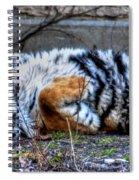 009 Siberian Tiger Wubb Me Bellwee Poweesh Spiral Notebook