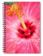 00a Buffalo Botanical Gardens Series Spiral Notebook