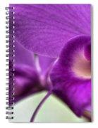 00c Buffalo Botanical Gardens Series Spiral Notebook
