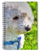 01 Portriat Of Wizard   Pet Series Spiral Notebook