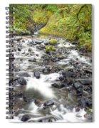0106 Columbia River Gorge Near Bridal Veil Falls Spiral Notebook