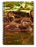 0132 Spiral Notebook
