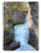 0142 Athabasca River Canyon Spiral Notebook