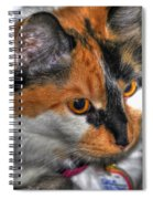 02 Cleo Spiral Notebook
