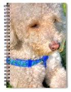 02 Portriat Of Wizard   Pet Series Spiral Notebook