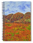 025 Landscape Spiral Notebook