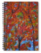 052 Abstract Thought Spiral Notebook