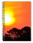 0601 Sunrise Over Silhouette Trees Spiral Notebook