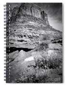 0715 Guardian Of Canyonland Spiral Notebook