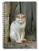 080801p076 Spiral Notebook