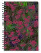 0901 Abstract Thought Spiral Notebook