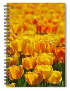 090416p026 Spiral Notebook