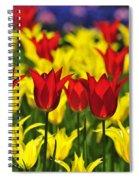 090416p028 Spiral Notebook
