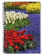 090811p122 Spiral Notebook