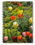 090811p128 Spiral Notebook