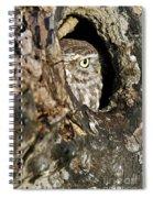 090811p325 Spiral Notebook