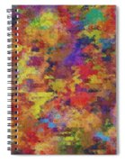 0955 Abstract Thought Spiral Notebook