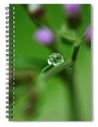 Drop Spiral Notebook