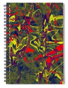 0399 Abstract Thought Spiral Notebook