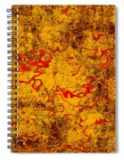 0503 Abstract Thought Spiral Notebook