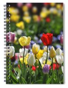 090416p033 Spiral Notebook