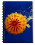 1803 Spiral Notebook