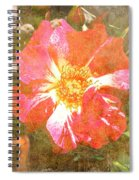4th Of July Rose Spiral Notebook