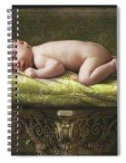 A Baby Asleep On A Pillar Spiral Notebook