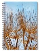 A Delicate World Spiral Notebook