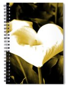 A Flower In The Shadows Spiral Notebook