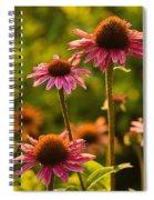 A Glow Spiral Notebook