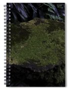 A Moss Covered Stone Inside The National Orchid Garden In Singapore Spiral Notebook