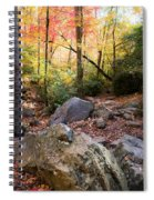 A Palette Of Colors Spiral Notebook