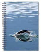 A Penguin Swims Through The Clear Spiral Notebook