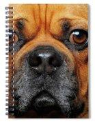 A Puggle Spiral Notebook