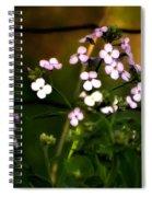 A Secret Place Spiral Notebook